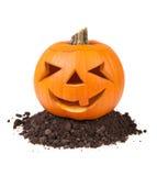 Pompoen Halloween Stock Afbeeldingen
