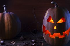 Pompoen in het Web en spinnen op de achtergrond van de boom voor Halloween 2 royalty-vrije stock afbeelding