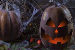 Pompoen in het Web en spinnen op de achtergrond van de boom voor Halloween 3 royalty-vrije stock foto's