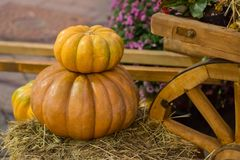 Pompoen op een ander geribbeld fruit De herfstoogst op strobasis en een deel van de rustieke achtergrond van wielkarren met exemp stock foto
