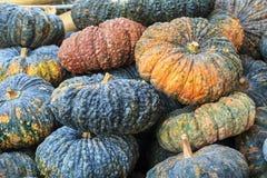 Pompoen in plantaardige markt Close-uppompoen voor gezondheid, voedsel en landbouwconceptontwerp stock afbeeldingen