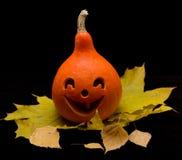 Pompoen 2 van Halloween Stock Afbeeldingen