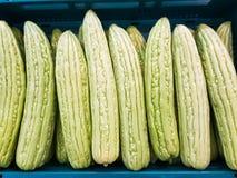 Pompoen voor Thais voedsel Royalty-vrije Stock Afbeelding