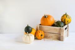 Pompoendecoratie voor Halloween, kleurrijke sierpompoenen, pompoenen, de herfst, oogst, met verlaten exemplaarruimte royalty-vrije stock afbeeldingen