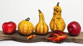 Pompoenen, appelen en de herfstbladeren royalty-vrije stock fotografie