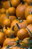 Pompoenen bij het landbouwbedrijf klaar om zijn verbeterd, symbool van Dankzegging stock foto's
