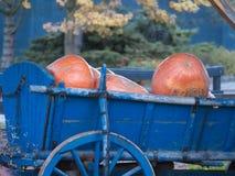 Pompoenen in blauwe oude wagen met houten wiel stock afbeelding
