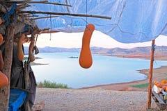 Pompoenen in een marktkraam bij een meer in Marokko Royalty-vrije Stock Foto