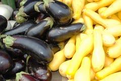 Pompoenen en aubergines. Royalty-vrije Stock Afbeelding