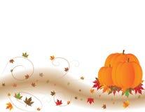 Pompoenen en Kleurrijk Autumn Leaves Royalty-vrije Stock Fotografie