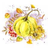 Pompoenen Hand het getrokken waterverf schilderen op witte achtergrond met plons Autumn Vegetables royalty-vrije stock foto's