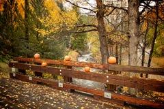 Pompoenen langs kleine houten brug Stock Afbeelding