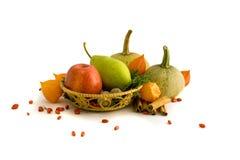 Pompoenen met appel en peer Royalty-vrije Stock Fotografie