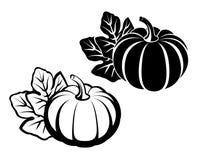 Pompoenen met bladeren Vector zwart silhouet vector illustratie