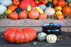 Pompoenen naast een kokende pot Royalty-vrije Stock Foto's