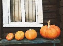 Pompoenen op een bank, de herfst stock afbeeldingen