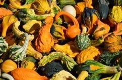 Pompoenen op een landbouwersmarkt Royalty-vrije Stock Fotografie