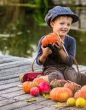 Pompoenen van Halloween van de jongensverf de kleine Stock Afbeeldingen