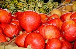 Pompoenen van Hokkaido riepen ook Rode Kuri Cucurbita-maxima Royalty-vrije Stock Afbeeldingen