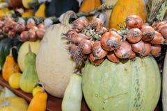 Pompoenen van verschillende verscheidenheden op een rij met een boog op marke Royalty-vrije Stock Foto