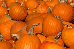 Pompoenen voor of Halloween, voedsel of decoratie worden gebruikt die Stock Afbeeldingen