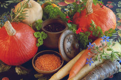 Pompoenen, wortelen, zaden, butternut pompoen en kruiden Royalty-vrije Stock Afbeelding