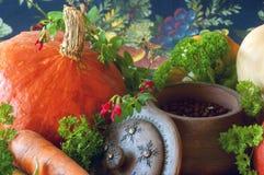 Pompoenen, wortelen, zaden, butternut pompoen en kruiden Stock Fotografie