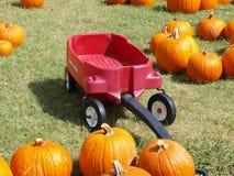 Pompoenflard en een weinig Rode Wagen Stock Fotografie