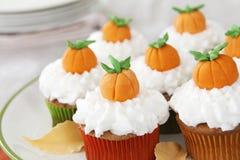 Pompoenkruid cupcakes Royalty-vrije Stock Afbeelding