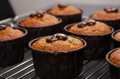 Pompoenmuffins met Chocolade op het Rek voor het Koelen royalty-vrije stock foto