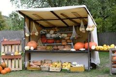Pompoenoogst in een Cabine in een Tuin, Tsjechische Republiek, Europa Royalty-vrije Stock Foto