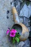 Pompoenpot Royalty-vrije Stock Afbeeldingen
