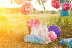 Pompoms cor-de-rosa e azuis na primeira festa de anos exterior Fotos de Stock
