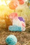 Pompoms cor-de-rosa e azuis na primeira festa de anos exterior Fotos de Stock Royalty Free