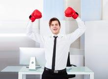 Pomyślny biznesmen jest ubranym bokserskie rękawiczki Obraz Royalty Free