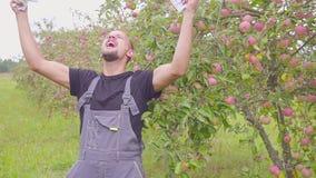 Pomyślny szczęśliwy młody rolnik mnóstwo pieniądze w jabłczanym sadzie i tanczy Pojęcie sukces biznes zbiory wideo