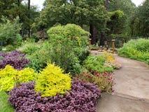 Pomysłu ogród w ogródu różanego Tyler Teksas widoku obrazy royalty free