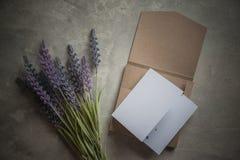 Pomysłu zaproszenia rocznika ślubu setu pudełka karta Obraz Stock