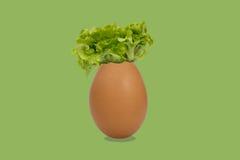 Pomysłu eggshell Fotografia Royalty Free