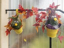 Pomysły dla jesieni Fotografia Stock