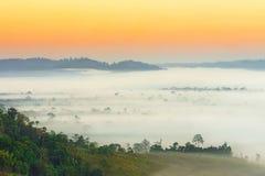 ponad mgła Zdjęcia Royalty Free