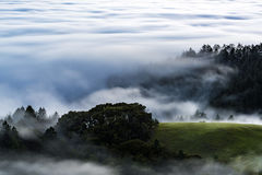 ponad mgła Obrazy Stock