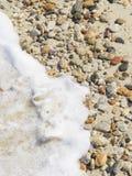 ponadto być sfotografowana w kamyczek morska woda z alg Zdjęcia Stock