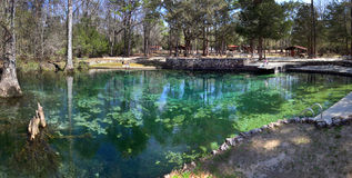 Ponce De Leon Springs Panoramic Stock Photography