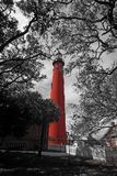 Red Lighthouse, selective color. The Ponce Inlet lighthouse under a cloudy sky and framed by trees  in Ponce Inlet, Florida, April 20, 2014.  Selective color Red Royalty Free Stock Image