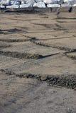 Poncez le modèle sur la plage avec des roches à l'arrière-plan Image libre de droits
