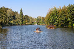 Pond в Mezhyhirya - бывшей личной резиденции бывшего президента Yanukovich, теперь открытой к публике Стоковое фото RF