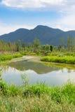 Pond при китайский народ пересекая деревянный мост и горы внутри Стоковое Изображение RF