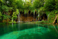 Pond. With crystal clear water in Croatia stock photography