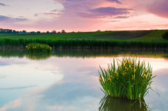 Pond with clear reflections and clouds in the sky Stock Image